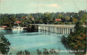 c1910 Postcard; Fig Tree, Lane Cove Sydney N.S.W. Australia Unposted