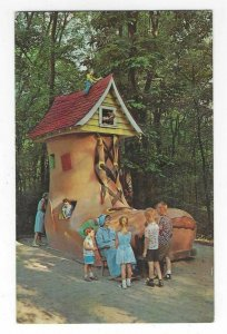 1960's Old Lady in the Shoe, Story Book Forest, PA Chrome Postcard