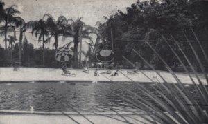 ORLANDO , Florida, 1930s ; The Florida Spa