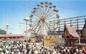 Palisades Park NJ Amusement Park Jungleland Giant Wheel Postcard