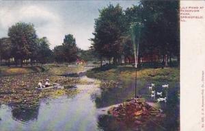 Illinois Springfield Lily Pond At Reseroir Park