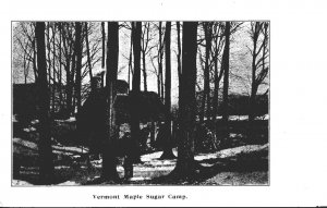 Vermont Typical Maple Sugar Camp