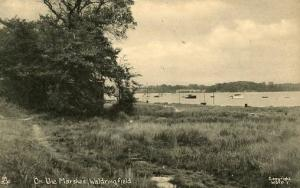 UK - England, Waldringfield. On the Marshes  -  RPPC