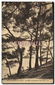 Old Postcard St Raphael Maritime Pines and & # 39Ile d & # 39Or