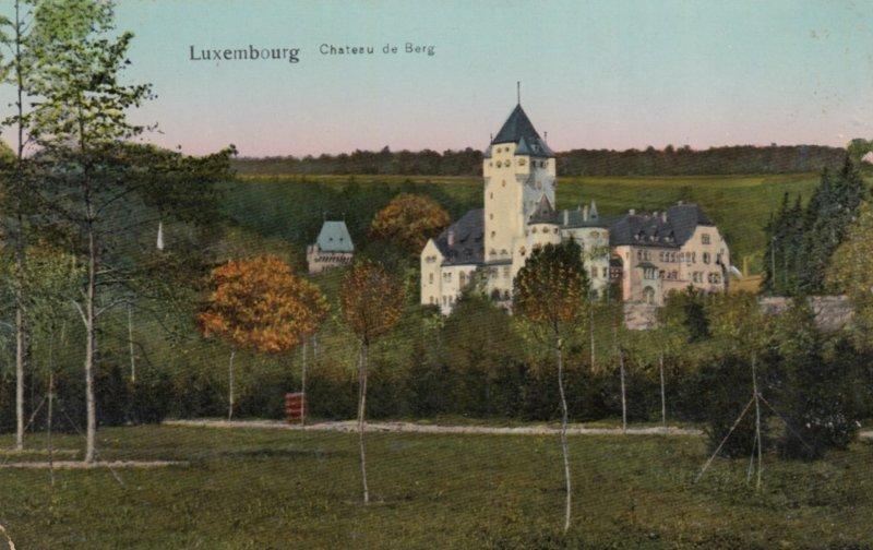 LUXEMBOURG , 1900-10s ; Chateau de Berg