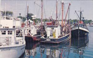 Massachusetts Cape Cod Commercial Fishing Fleet At Hyannis Harbor