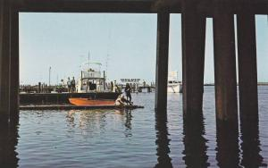 All ages enjoy the famous fishing at Ocean City Catwalk below the U.S. Hwy 50...