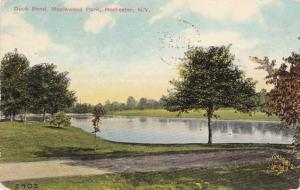 Duck Pond at Maplewood Park, Rochester, New York - pm 1910 - DB