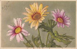 Daisies daisy fantasy novelty greetings postcard