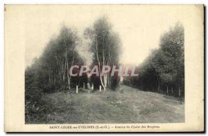 Old Postcard St Leger en Yvelines Avenue du Chalet des Bruyeres