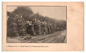 E.A. Budd Post Co.'s Brentwood, AR Post Yard Postcard *4W