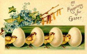 Greeting - Easter. Chicks