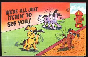Vintage Humor We're All Just Itchin'...Dogs Animals Fire Hudrant