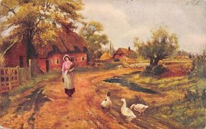The Farmers Daughter on Country Lane~Geese~Sheep~Cottages~1907 Artist Postcard