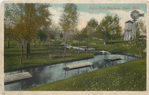 Paris Michigan~State Fish Hatchery~Weathervane~Wooden Water Tower~1920s Postcard