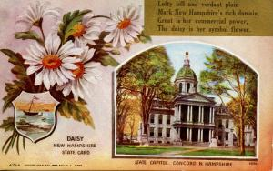 State Flower & Capitol - New Hampshire, Daisy (As of 1919 it's now Purple Lilac)