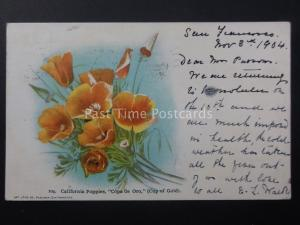 Poppies CALIFORNIA POPPIES c1904 UB Old American Postcard by Art Litho Co