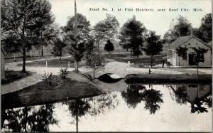 Reed City MI~Fish Hatchery~Small Arch Footbridge Over Pond #1~c1910 Bluesky