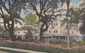 Florida Clearwater Grey Gull Inn Curteich