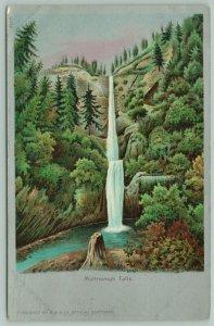 Multnomah Falls Oregon~BB Rich Artist Drawing~Stump UDB Postcard c1905