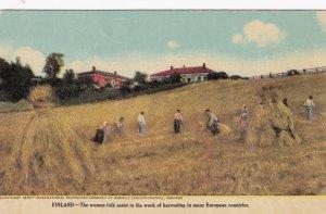 International Harvester Company In Finland Women Harvesting Wheat sk734