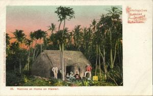 Hawaiian Islands, Natives at Home (1900) Private Mailing Card