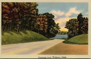 Michigan Greetings From Wellston