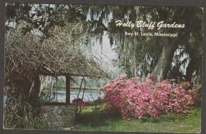Holly Bluff Gardens Postcard Azaleas Bay St. Louis  Mississippi