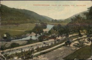 Woodenbridge Vale of Avoca Co. Wicklow c1910 Postcard