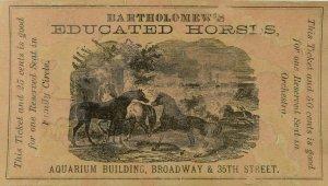Bartholomew's Educated Horses Circus 25¢ Ticket P113