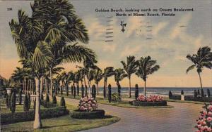 Florida Miami Beach just North Of Miami Beach 1942