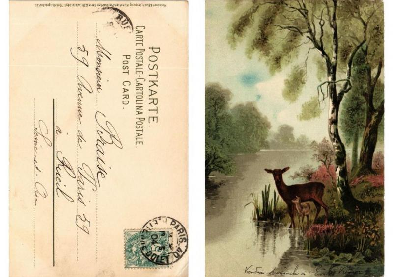 CPA Wald-Idyll Meissner & Buch Litho Serie 1229 (730622)