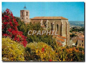Modern Postcard Hyeres Var Palms Eglise Saint Paul