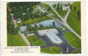 Aerial View Of Mosley's Shady Lake Motel & Rio Restaurant, Rocky Mount, North...