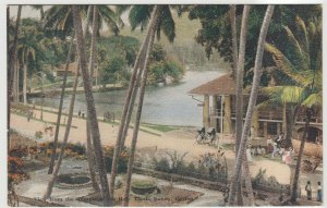 Sri Lanka / Ceylon; View From Temple Of Holy Tooth PPC By Plate, Unused, c 30's