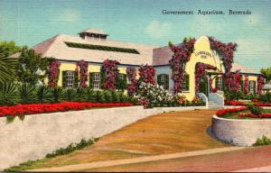 Bermuda The Government Aquarium 1947