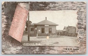 Amherst NH Boston & Maine Railroad Depot & Train~Peeled Birch Bark Border~1908