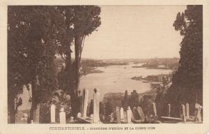 Turkey Constantinople Istanbul cemetery & panorama