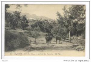 TLEMCEN, Algeria, 00-10s, Sidi-Bou-Medine et la Route des Cascades