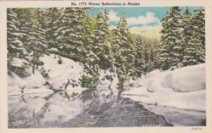 Alaska Winter Reflections