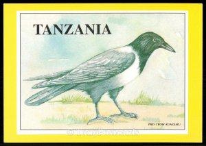 Tanzania - Pied Crow Kunguru