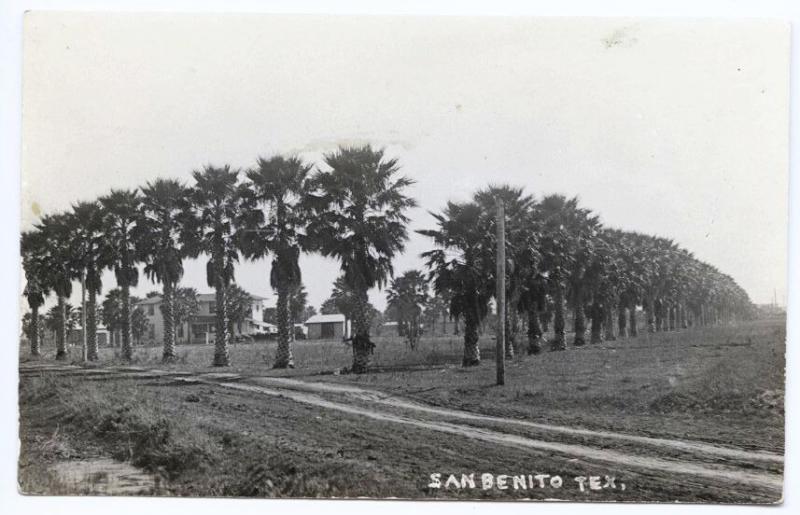 Rare View Along Palm Avenue San Benito TX RPPC Real Photo Postcard