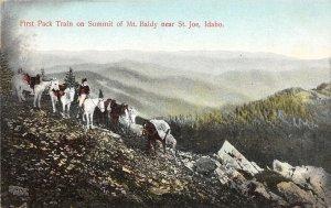 H83/ St Joe Idaho Postcard c1910 First Pack Train Summit Mt Baldy  60