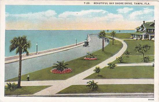 Florida Tampa Beautiful Bay Shore Drive