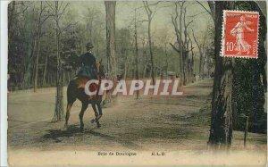 Old Postcard Bois de Boulogne Jumper Horse