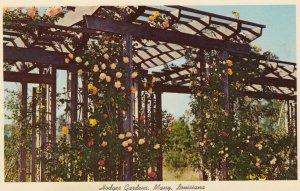 MANY, Louisiana, 1950-1960s ; Hodges Gardens