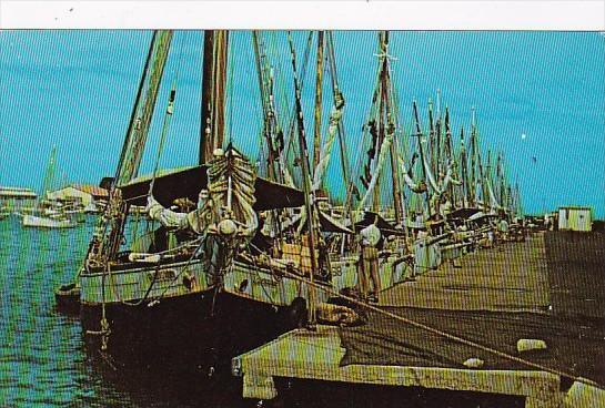 Aruba Three Schooners Tied Up At Oranjestad's Harbor