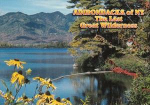 New York The Adirondack Park Lake View