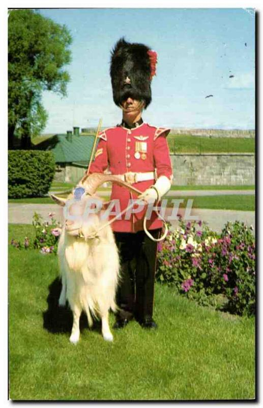 Postcard The Old Corporal in support of the Baptist mascot of the 22nd Regime...