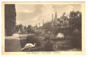Lago Maggiore - Isola Bella , Giardino , 1900-10s #2
